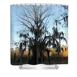 Shower Curtain featuring the photograph Flint River 13 by Kim Pate