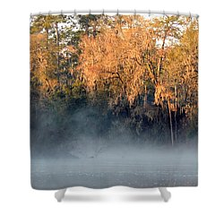 Shower Curtain featuring the photograph Flint River 14 by Kim Pate