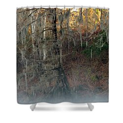 Shower Curtain featuring the photograph Flint River 15 by Kim Pate