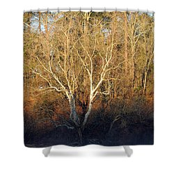 Shower Curtain featuring the photograph Flint River 16 by Kim Pate