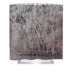 Shower Curtain featuring the photograph Flint River 2 by Kim Pate