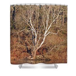 Shower Curtain featuring the photograph Flint River 25 by Kim Pate