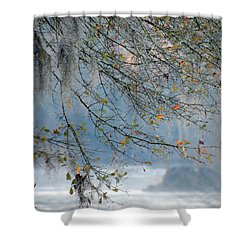 Flint River 29 Shower Curtain