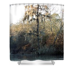 Shower Curtain featuring the photograph Flint River 30 by Kim Pate