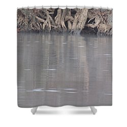 Shower Curtain featuring the photograph Flint River 6 by Kim Pate