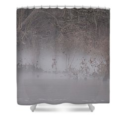 Shower Curtain featuring the photograph Flint River 7 by Kim Pate