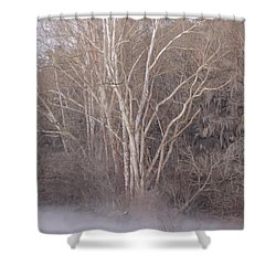 Shower Curtain featuring the photograph Flint River 9 by Kim Pate