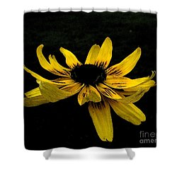 Black Eyed Susan Suspense Shower Curtain by Ecinja