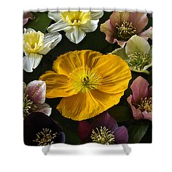 Floating Bouquet Of Early April Flowers Shower Curtain
