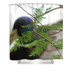 Shower Curtain featuring the photograph Floating By by Beth Vincent