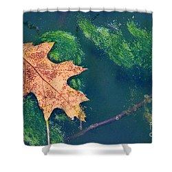 Floating Leaf  Shower Curtain by Karen Adams