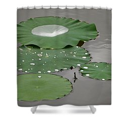 Floating Lotus Leaves Shower Curtain by Jane Ford