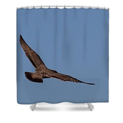 Floating On Air Shower Curtain