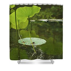Floating World #2 - Lotus Leaves Art Print Shower Curtain by Jane Eleanor Nicholas
