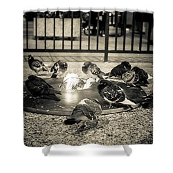Flockin' Around The Fire Shower Curtain by Melinda Ledsome