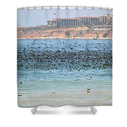 Flocking At Terranea Shower Curtain