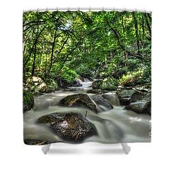 Flooded Small Stream  Shower Curtain by Dan Friend
