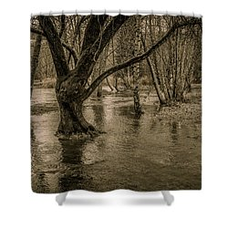 Flooded Tree Shower Curtain