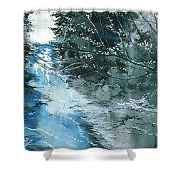 Floods 3 Shower Curtain by Anil Nene