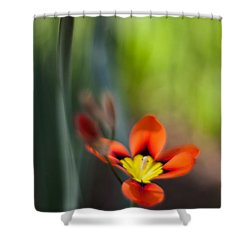 Flora Counterpoint Shower Curtain by Mike Reid