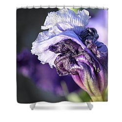 Floral 19 Shower Curtain