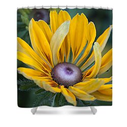 Floral 2 Shower Curtain