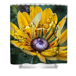 Floral 3 Shower Curtain