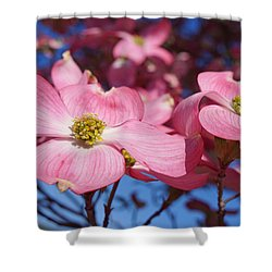 Floral Art Print Pink Dogwood Tree Flowers Shower Curtain by Baslee Troutman