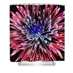 Shower Curtain featuring the photograph Floral Color Burst by Sue Melvin