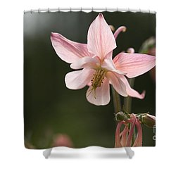 Floral Eloquence  Shower Curtain