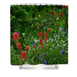Floral Explosion Shower Curtain by Jeremy Rhoades