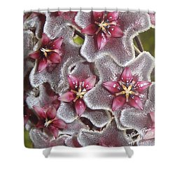 Floral Presence - Signed Shower Curtain