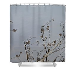 Floral Reflection Shower Curtain by Sonali Gangane