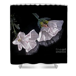 Floral Reflections Shower Curtain by Kaye Menner