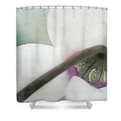 Floral Whites Shower Curtain by Priska Wettstein