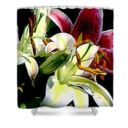 Shower Curtain featuring the photograph Florals In Contrast by Ira Shander