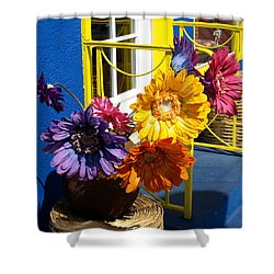 Flores Colores Shower Curtain