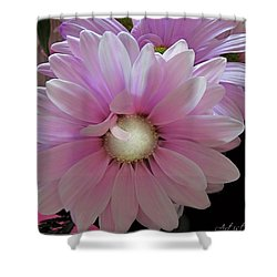 Florescence In Lavender Pink Shower Curtain