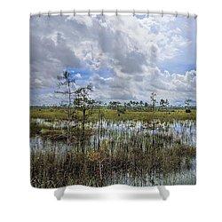 Florida Everglades 0173 Shower Curtain by Rudy Umans