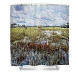 florida Everglades 0177 Shower Curtain by Rudy Umans