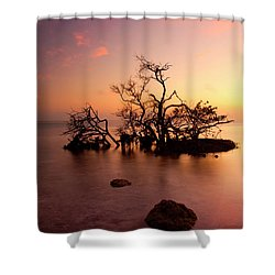Florida Keys Sunset Shower Curtain by Mike  Dawson
