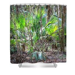 Florida Palmetto Bush Shower Curtain by Carol Groenen