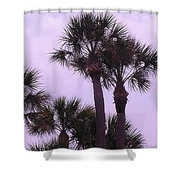 Florida Palms Shower Curtain by John Wartman