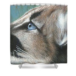 Shower Curtain featuring the painting Florida Princess by Mike Brown