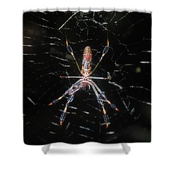 Insect Me Closely Shower Curtain