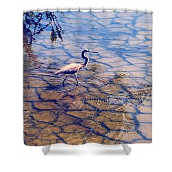 Florida Wetlands Wading Heron Shower Curtain