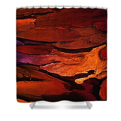 Flotsam Shower Curtain