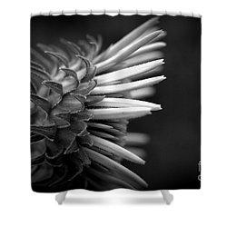 Flower 58 Shower Curtain