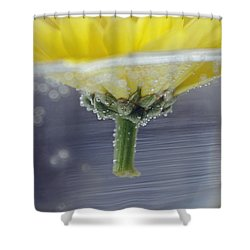 Flower Afloat Shower Curtain by Adria Trail