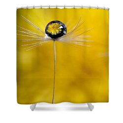 Flower And Seed Shower Curtain